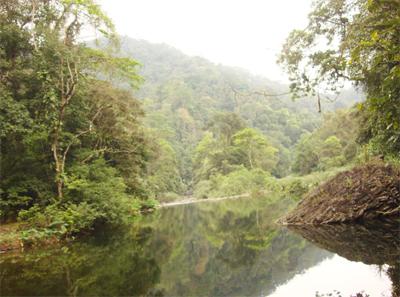 Tài nguyên rừng và động, thực vật
