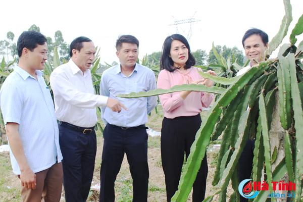 Văn phòng HĐND tỉnh Hà Tĩnh hỗ trợ xã Ngọc Sơn xây dựng nông thôn mới