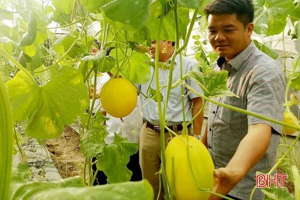 Giúp nông dân làm giàu bằng nhiều nghề