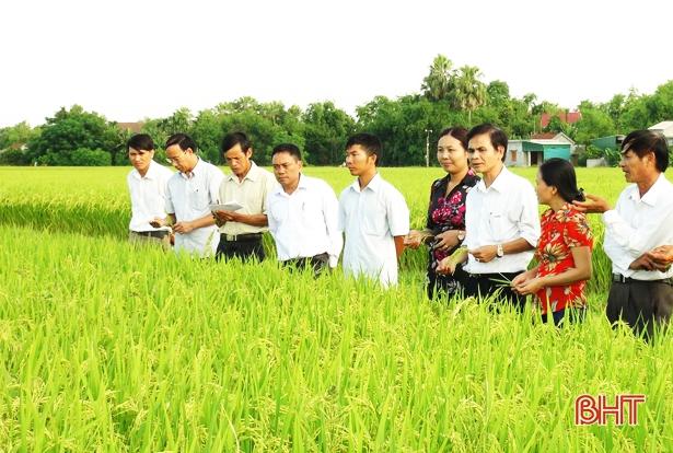 """Những người """"truyền lửa"""" nông thôn mới ở Hà Tĩnh"""