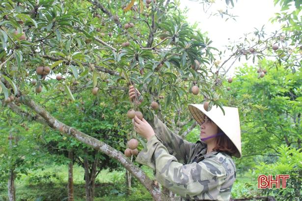 Bình quân mỗi xã ở Can Lộc đạt 17,6 tiêu chí nông thôn mới