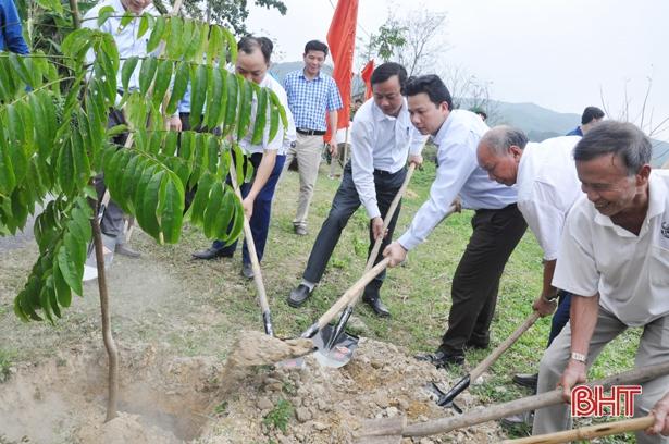 Chủ tịch UBND tỉnh Đặng Quốc Khánh trồng cây đầu xuân và kiểm tra sản xuất tại Vũ Quang