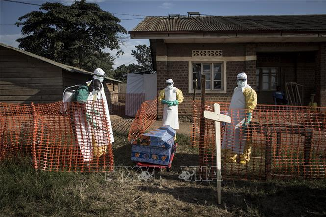 Dịch Ebola bùng phát, 502 người thiệt mạng tại Congo
