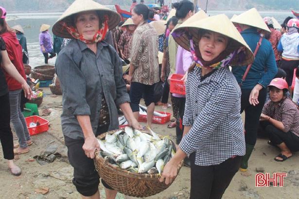 Hà Tĩnh phấn đấu sản lượng cá vụ năm 2019 đạt hơn 18.000 tấn