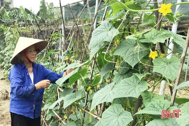Lộc Hà: 8 khu dân cư và 114 vườn hộ đạt chuẩn NTM kiểu mẫu