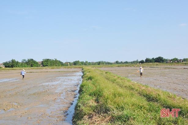 Nông dân Hà Tĩnh sử dụng trên 120 nghìn tấn thuốc bảo vệ thực vật và phân hóa học mỗi năm