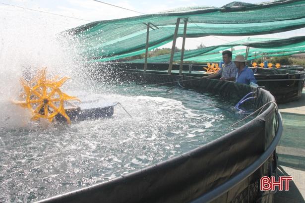 """Ngỡ ngàng mô hình nuôi tôm """"trên cạn"""" của nông dân Hà Tĩnh"""