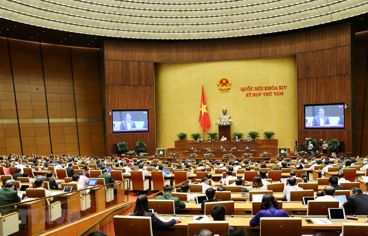 Đại biểu Quốc hội phân tích bức tranh kinh tế - xã hội tổng quan năm 2019