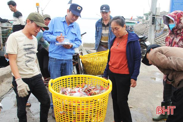 """Thiếu đầu tư, các cảng cá Hà Tĩnh gặp khó trong khắc phục """"thẻ vàng"""""""