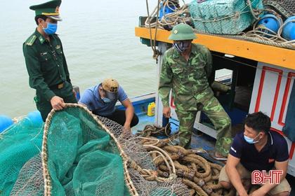 Bắt giữ 2 tàu giã cào Thanh Hóa, Nghệ An khai thác trái phép