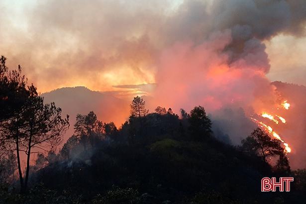 Công điện khẩn của UBND tỉnh về tăng cường các biện pháp cấp bách phòng cháy, chữa cháy rừng