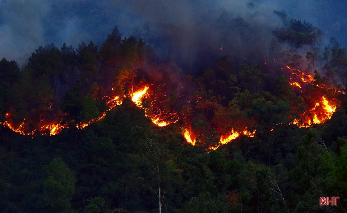 500 người trắng đêm dập lửa cứu rừng