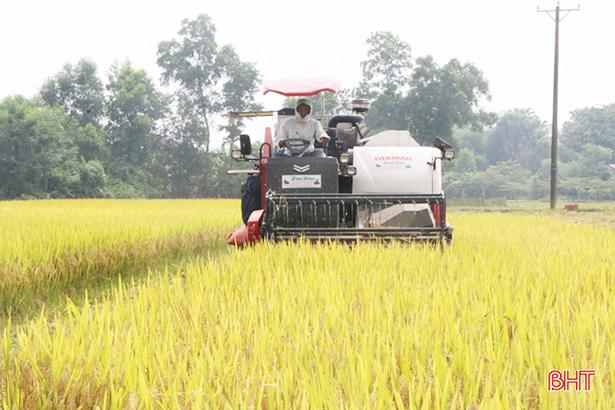 """Hà Tĩnh tiếp tục """"giữ lửa"""" trong xây dựng NTM, tạo sự ổn định kinh tế nông thôn"""