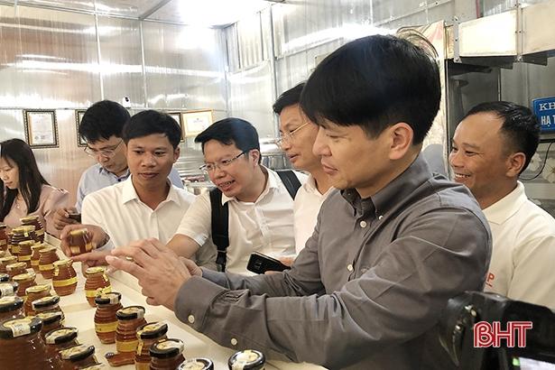 Chương trình OCOP là giải pháp phát triển kinh tế nông thôn bằng nội lực ở Hà Tĩnh