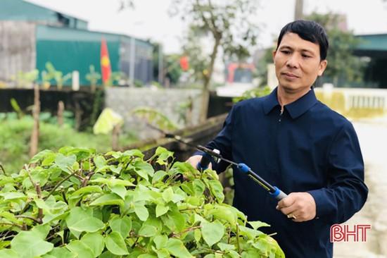 Người giáo dân góp hàng trăm triệu làm đẹp khu dân cư ở Hà Tĩnh