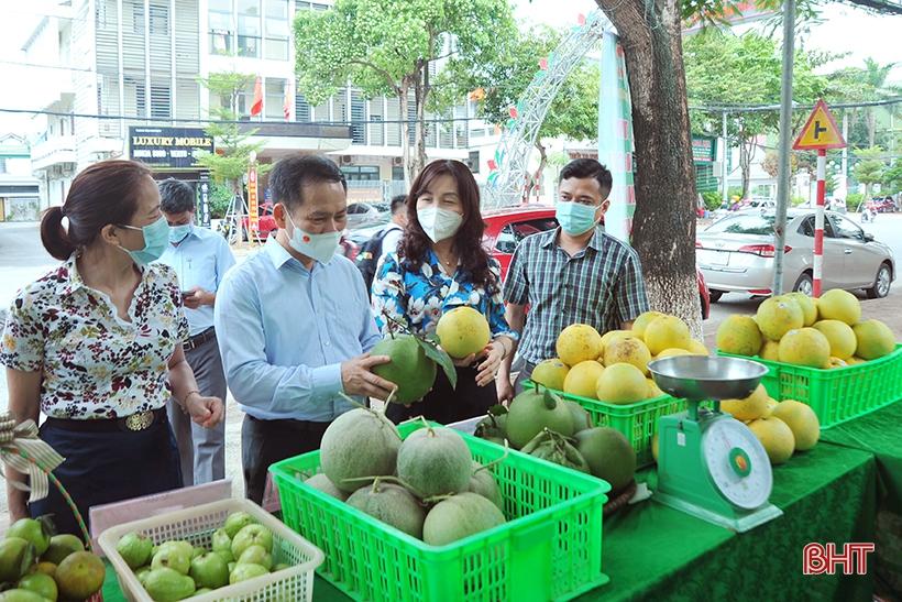 Tuần lễ kết nối tiêu thụ nông sản tại Hà Tĩnh phấn đấu tiêu thụ gần 200 tấn sản phẩm