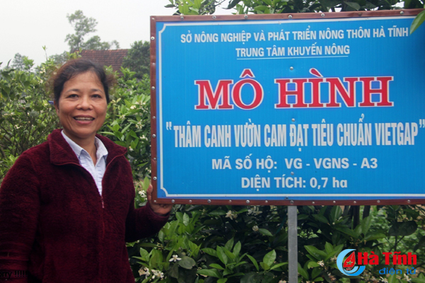 Nữ cán bộ y tế xã biến 6.000m2 vườn tạp thành trại cây VietGAP